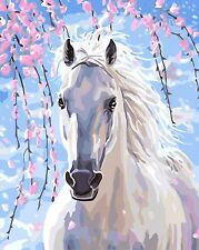 """16""""x20"""" DIY Paint By Number kit Oil Painting White Horse Scenery On Canvas 683"""