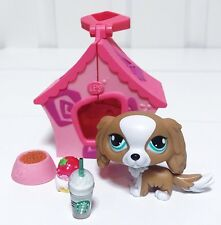 Littlest Pet Shop LPS Dog Lot King Charles Spaniel #1825 SPECIAL ED Accessories