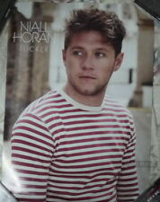 Niall Horan Flicker 2017 Taiwan Promo Poster (One Direction)