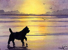 CAIRN TERRIER Art Print Dog Watercolor Painting 8 x 10 Signed by Artist DJR