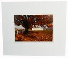 "9"" Photo Print Bill Coleman Amish Americana Artist Proof Old House Tree Yard Art"