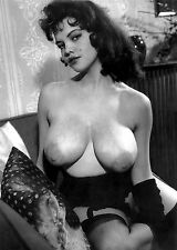 1960s Huge Busty Rosina Revelle  Nude Pinup  8 x 10 Photograph