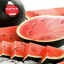 Hokkaido Densuke Watermelon 20 Real Seeds Japan My Organic Garden Special Import