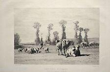 GRAVURE 1886 Pâturage normand Vaches Troyon Chaigneau Imp Eudes 20x13,5cm L'Art