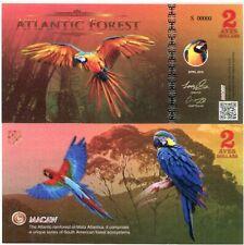 ATLANTIC FOREST 2 AVES DOLLARS MACAW BIRD NEW SPECIMEN 2016