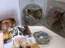 Guy Pearce DEUX BROTHERS 2004 Tiger Adventure 2-Disc Français DVD largeur/Housse