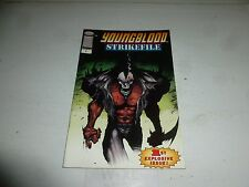 YOUNGBLOOD Comic : STRIKEFILE - Vol 1 - No 1 - Date 04/1993 - Image Comic
