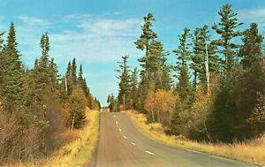 ORIGINAL POSTCARD OF A PAVED ROAD THROUGH THE WOODS IN NORTHERN MINNESOTA