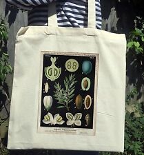Vintage Victorian Botanical Illustration Print White Cotton Tote Bag No.1