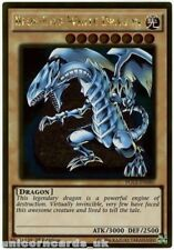 PGL2-EN080 Blue-Eyes White Dragon Gold Rare 1st Edition Mint YuGiOh Card