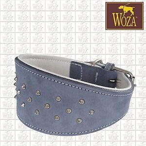 WOZA Premium Windhundhalsband Vollleder Greyhound Rindnappa Lederhalsband S9