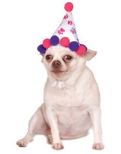 Girl Paw Print Pet Dog Cat Happy Birthday Pink Purple Party Hat