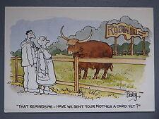 R&L Postcard: J Arthur Dixon Comic, Besley, Mother in Law Joke, Cow Bull