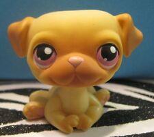 Littlest Pet Shop No # Golden Pug Puppy Dog w/ Pink Eyes