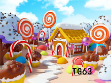 7X5FT Candyland Road House CP Vinyl Photography Photo Background Studio Backdrop