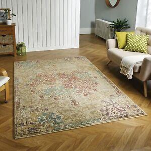 Florenza 2069 Y Mehrfarbig Verblichen Traditionell Teppich Verschiedene & Flur
