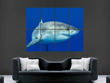 GREAT WHITE SHARK POSTER  ART WALL PICTURE GIANT PRINT IMAGE SEA