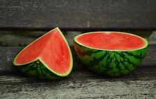 WATERMELON 'Crimson Sweet' 15 seeds ORGANIC heirloom vegetable garden EASY GROW
