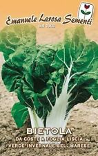 70 Semi/Seeds BIETOLA da coste a foglia liscia verde invernale sel. barese