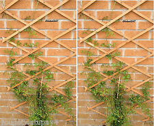 # 2 x Natural  WOOD 5FT X 2FT Expanding Wooden Garden Trellis