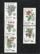 RUSIA. Año: 1993. Tema: FLORA. PLANTAS.