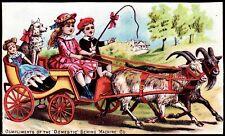 """DOMESTIC"" SEWING MACHINE (1882) *GOAT CART* Victorian Trade Card *ANAMOSA, IOWA"