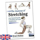 The Anatomy of Stretching - Brad Walker (Paperback) - Your Illustrated Guide ...