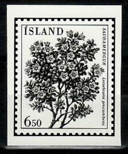 Photo Essay, Iceland Sc593 Flower, Loiseleuria procumbens.