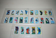 More details for rare musgrave brothers ltd (tea) - full set- tropical birds 25 of 25