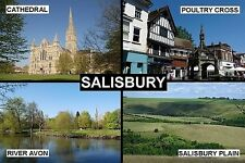 SOUVENIR FRIDGE MAGNET of SALISBURY ENGLAND