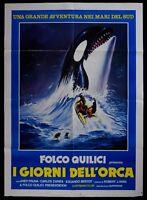 M107 Manifesto 2F I Tage Dell' Orca Folco Quilici Pruna Zapata Bertot