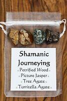 Shamanic Journey Crystal Set Petrified Wood Picture Jasper Tree Turritella Agate