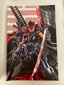 IDW: G.I. JOE: A REAL AMERICAN HERO!: ISSUE #250: NM COND: KRS VIRGIN RE-COVER