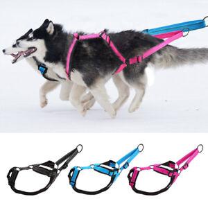 Dog Weight Pulling Sledding Harness Fleece Padded X-Back Style Black Blue Pink