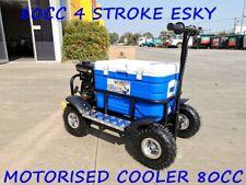 80cc Motorised Esky Cooler Scooter 4 Wheel Motorbike Atv Quad Icebox Esky Lifan