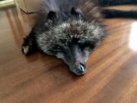 VINTAGE ART DECO ARTIC FOX FUR STOLE CAPE WRAP IN OLD CARD BOX