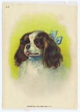 Large Premium Cigarette silk pekingese Dog Domestic Animal S1 396