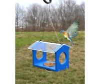 Songbird Essentials Bluebird Canteen Mealworm Feeder SERUBBC
