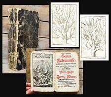 1738 Gartenkunst Gartenbau Obstbäume Dahuron Wohl-Bewährte Garten-Geheimnüsse