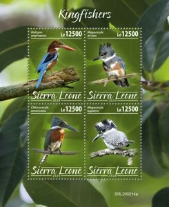 Sierra Leone Birds on Stamps 2020 MNH Kingfishers Crested Kingfisher 4v M/S