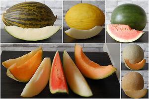 20 Samen Melonen-Mischung Zuckermelone Cantaloup Wassermelone Honigmelone