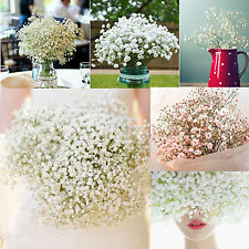 1 Head Romantic Baby's Breath Gypsophila Silk Flower Party Wedding Rome Décor