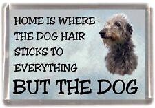 "Deerhound Dog Fridge Magnet ""Home is Where"" Design by Starprint"
