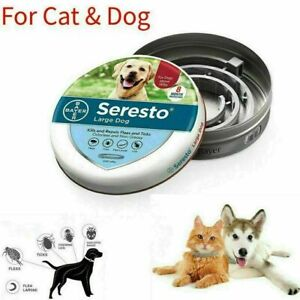 UK Adjustable Flea and Tick Collar Protection for Small Medium Large Cat Dogs