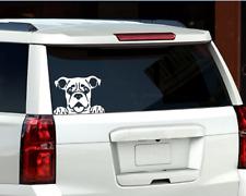 Boxer Peeking Dog Window Decal