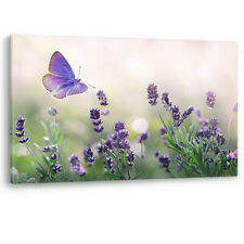 Purple Blossom Lavender Butterfly Nature Large Canvas Wall Art Picture Print A0