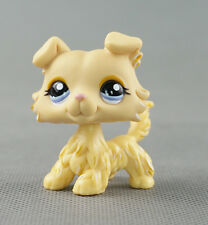 #1194 Littlest Pet Shop LPS Kids Toys Cream Yellow Collie Dog Blue Purple Eyes