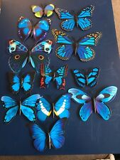Collection Of 12 Different New Blue Butterfly Job Lot Fridge Decorative Magnets