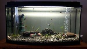 Aquarium+Fische komplett mit Unterschrank gebraucht