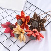 55cm Natural DIY hibiscus Lotus Dried flower Wedding decoration Valentine'sDP TR